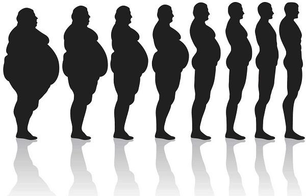 Regulacija telesne težine